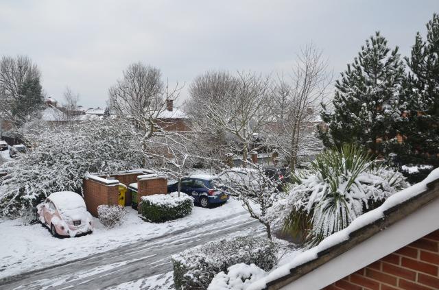 Chez Cosgrove-Harris - under snow in Mitcham